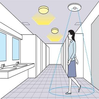 Thiết bị cảm ứng bật sáng đèn khi cảm ứng di chuyển của cơ thể